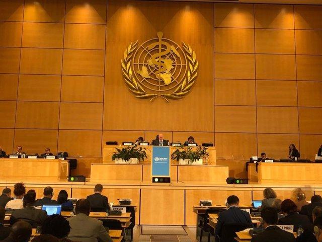 """Sanidad definde en la 72ª Asamblea Mundial de la Salud """"mejorar y reforzar"""" el acceso al sistema sanitario"""