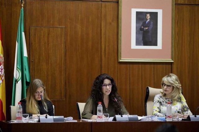 """Igualdad reformará la Ley de Discapacidad """"para hacerla más ambiciosa y ajustada a las necesidades del colectivo"""""""