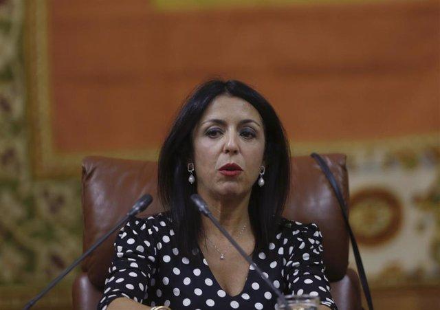 Primera jornada del Pleno del Parlamento en el Parlamento de Andalucía