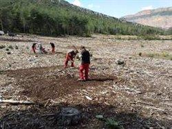 Endesa i Agricultura lideren un projecte de restauració ecològica i millora de l'hàbitat del gall fer a Boumort (ACN)