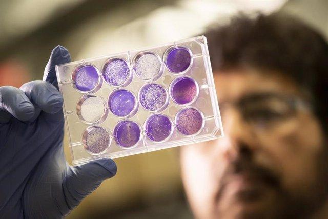 Investigadores diseñan un método para transportar las vacunas con temperaturas de hasta 40ºC