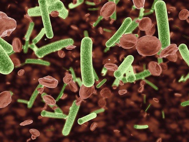 Identifican las infecciones del torrente sanguíneo más mortíferas
