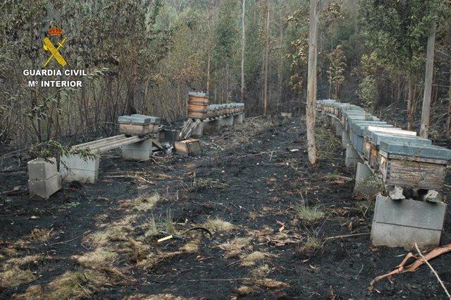 Sucesos.- Investigado un apicultor, vecino de Tineo, por el incendio de Sierra Sollera