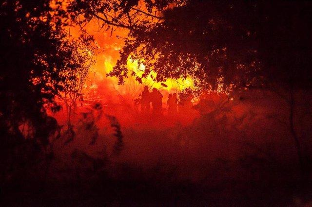 'O que arde' de Oliver Laxe, premio del jurado en la sección 'Un certain regard' del Festival de Cannes