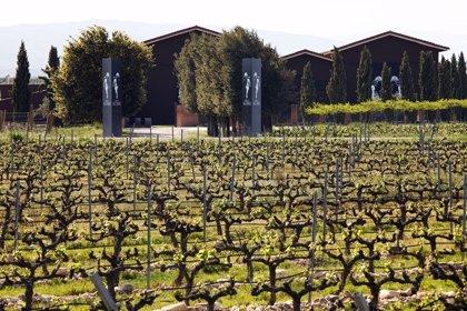 El grupo Terras Gauda compra una bodega en La Rioja para impulsar su posicionamiento global