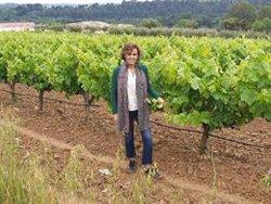 Montserrat passa la seva jornada de reflexió fent un passeig rural en família a Sant Sadurní d'Anoia (Barcelona) (PARTIDO POPULAR)