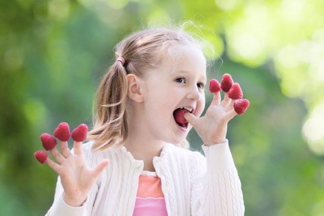 Alergias e intolerancias alimenticias: adapta el entorno