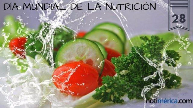 28 De Mayo: Día Mundial De La Nutrición, ¿Es Importante Cuidar Los Hábitos Alimenticios?
