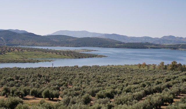 Consejo.-La Junta salva la gestión hidrológica y elevará el Plan de las Cuencas Mediterráneas al Pacto por el Agua