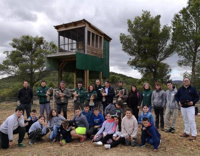 Seis nuevas águilas de Bonelli liberadas en Cáseda, dentro del proyecto europeo AQUILA a-LIFE