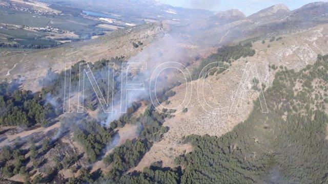 Granada.- Sucesos.- Declarado un incendio forestal en un paraje de Pinos Puente