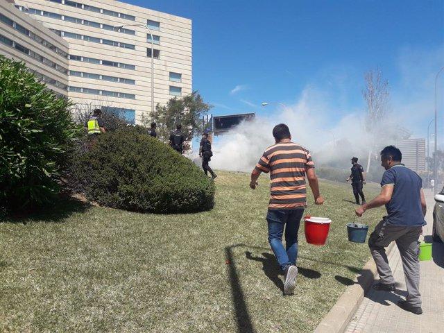 Successos.- Sufoquen un incendi de vegetació al costat de l'autopista enfront del Palau de Congressos
