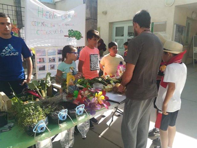 CádizAlDía.- Más de 100 centros de la provincia participan en el programa de Huertos de Escolares de Diputación