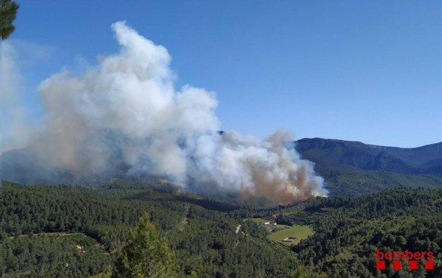 Successos.- Un incendi forestal en Pradell (Tarragona) obliga a tallar la R15