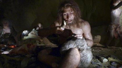 La disminución de las tasas de fertilidad puede explicar la extinción de Neanderthal