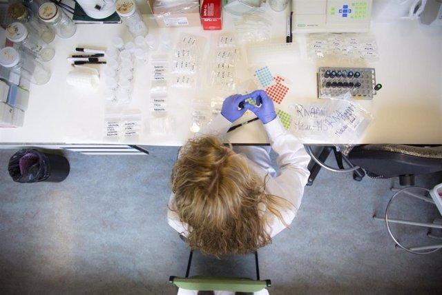Un laboratorio de investigación en la UPNA.