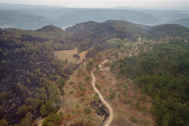 Medio Ambiente elabora el 'Decálogo de Valencia' para planificar la prevención de incendios forestales