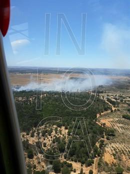 Huelva.- Sucesos.- Declarado un incendio forestal en el paraje Fuente de la Corcha, en Beas