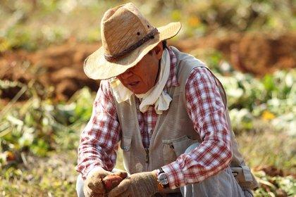 Día del Campesino en Colombia, ¿por qué se celebra el primer domingo de junio?