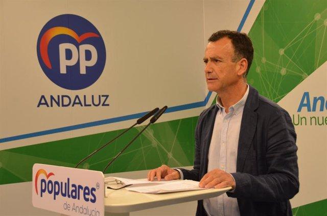 """PP-A destaca que los presupuestos """"aumentan transversalmente"""" las partidas para la creación de empleo"""