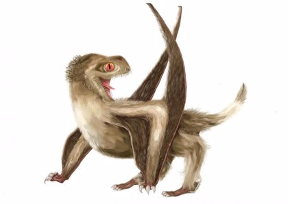 Las plumas aparecieron 100 millones de años antes que las aves