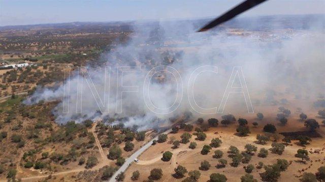 Huelva.- Sucesos.- Declarado un incendio forestal en San Bartolomé de la Torre
