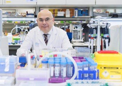 Una inmunoterapia aporta más beneficios que la quimioterapia en pacientes con cáncer gástrico