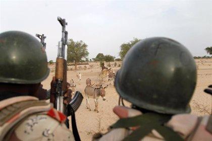 Níger anuncia la muerte de 53 presuntos miembros de Boko Haram en operaciones en la región del lago Chad