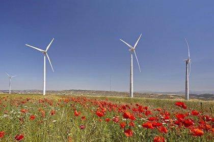 Grenergy cierra con CAF e ICO la financiación de dos parques eólicos en Perú por más de 35 millones