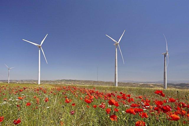 S3.- El Gobierno de Navarra agiliza la autorización de parques eólicos con un nuevo decreto