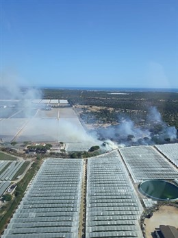 Huelva.- Sucesos.- El Infoca trabaja en la extinción de un incendio declarado en Moguer