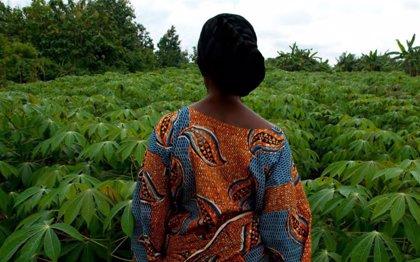 La independencia laboral de la mujer incrementa el riesgo de violencia machista en Nigeria