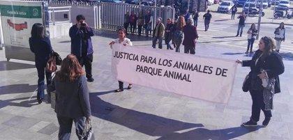 Rechazan suspender la pena a la exresponsable de la protectora de Torremolinos condenada por maltrato animal