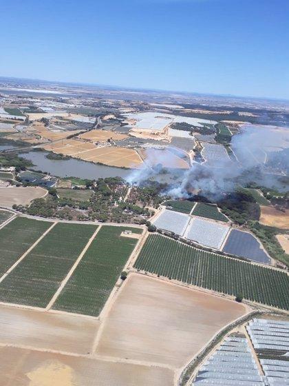Declarado un incendio forestal en Palos de la Frontera y otro en Punta Umbría, en Huelva