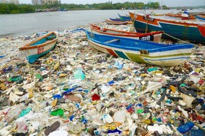 Un mar de plástico, la plaga que se extiende por Iberoamérica