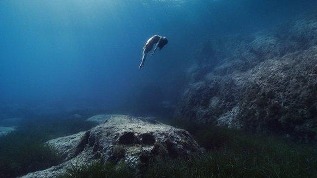 Agro.- Estel Damm defensa la protecció del Mediterrani en una campanya