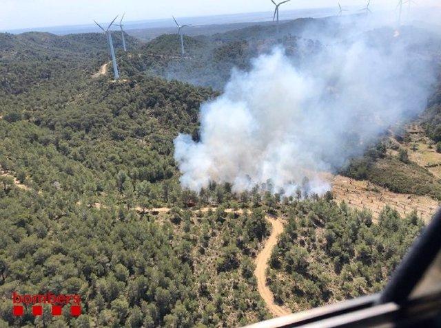 Successos.- Un incendi crema vegetació al Perelló (Tarragona)