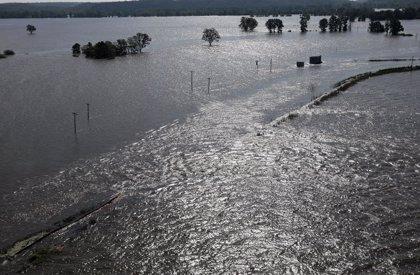 La 'zona muerta' del Golfo de México puede ser en este año la segunda más grande registrada