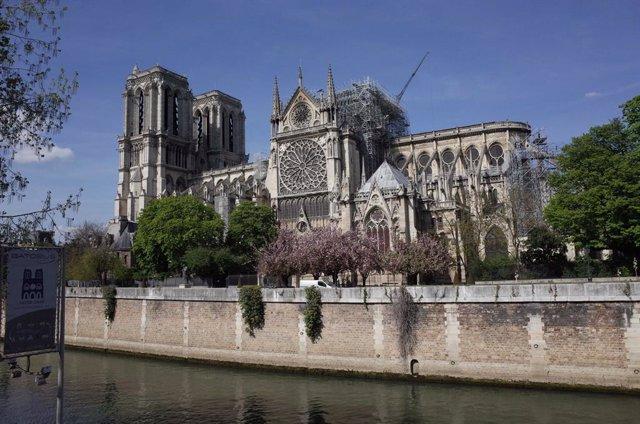 """Una catedral """"efímera"""" de madera se instalará junto a Notre Dame mientras duren las obras"""