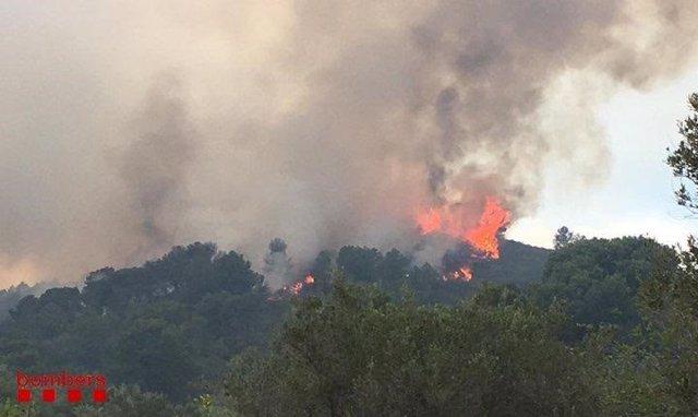 Successos.- Estabilitzat l'incendi del Perelló (Tarragona) després de cremar unes 200 hectàrees