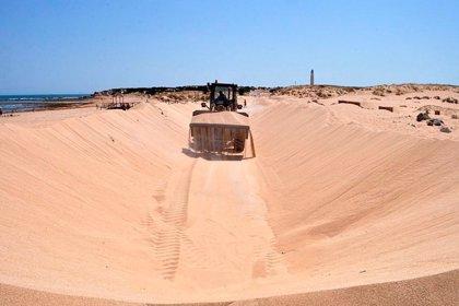 Ayuntamiento de Barbate reitera a Costas la petición para la retirada de arena del acceso a las playas de Trafalgar