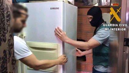 Desmantelada en Almería una plantación de marihuana oculta en una tienda de compraventa de objetos robados