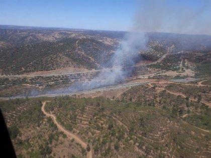 Declarado un incendio en la Cuesta de la Media Fanega de El Garrobo (Sevilla)