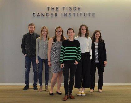 Identifican un mecanismo por el que algunos tumores hepáticos son resistentes a inmunoterapia