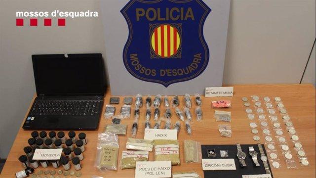 Successos.- Intervenen 2.850 plantes de marihuana d'una planta baixa d'un habitatge de Cerdanyola del Vallès