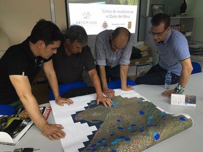 Fundación Artemisan y los cazadores catalanes estudiarán las especies cinegéticas acuátidas del Delta del Ebro