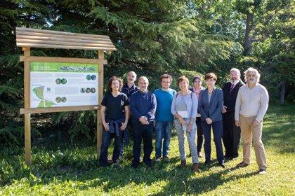 La UPNA acomete un proyecto para preservar el entorno natural del río Sadar a su paso por el campus en Pamplona