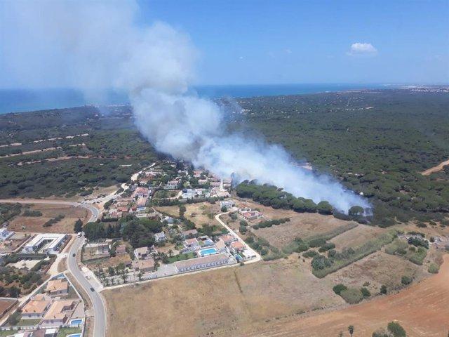 Cádiz.- Sucesos.- Más de 20 viviendas fueron desalojadas por el incendio en Conil y dos personas trasladadas al hospital