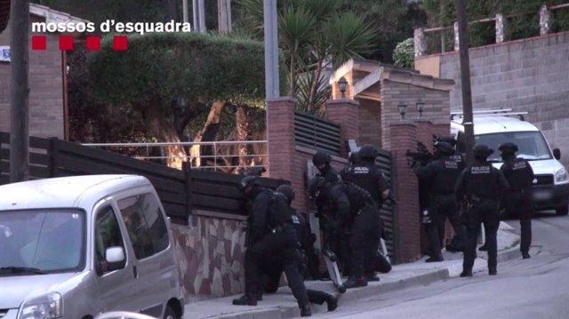 Successos.- Detinguts 15 membres d'una xarxa que conreava i distribuïa marihuana a Catalunya