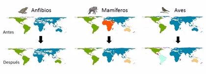 Un estudio del CSIC constata que el impacto humano cambia la forma en que se organiza la biodiversidad